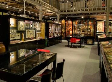 Oxford University, Pitt Rivers Museum, UK